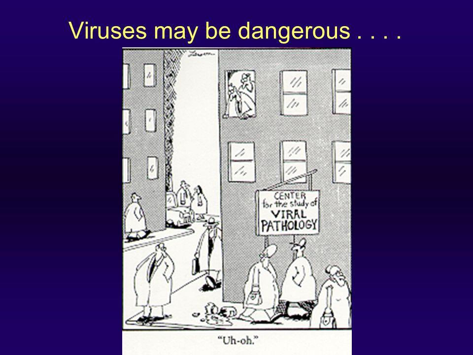 Viruses may be dangerous . . . .