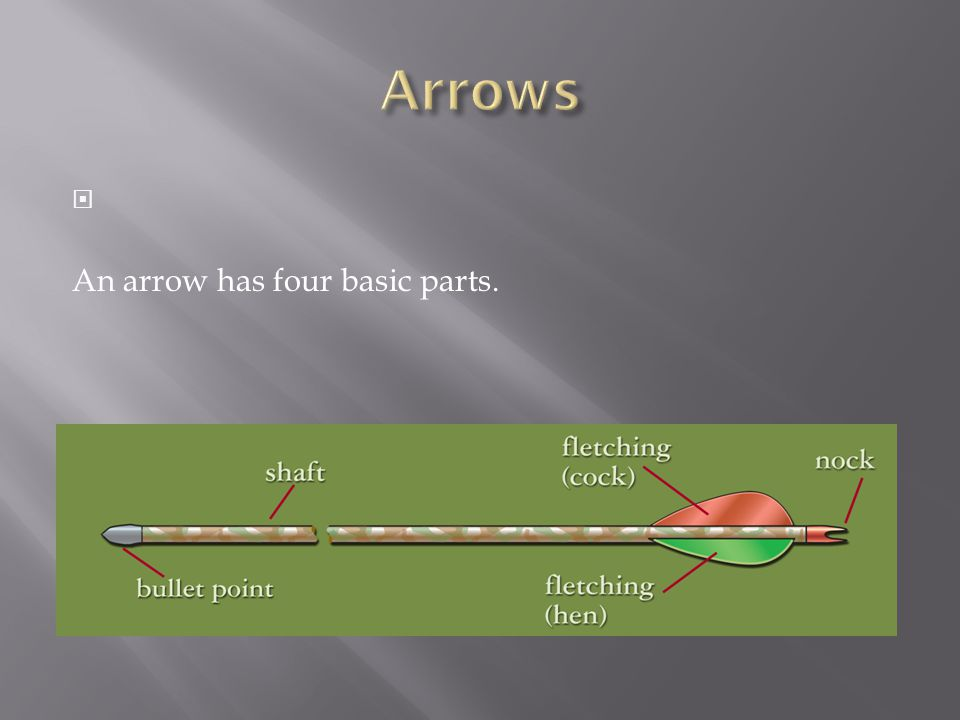 Arrows An arrow has four basic parts.