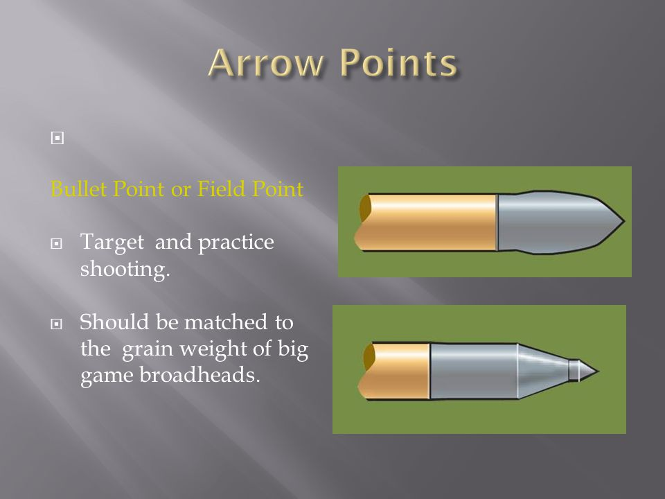 Arrow Points Bullet Point or Field Point Target and practice shooting.