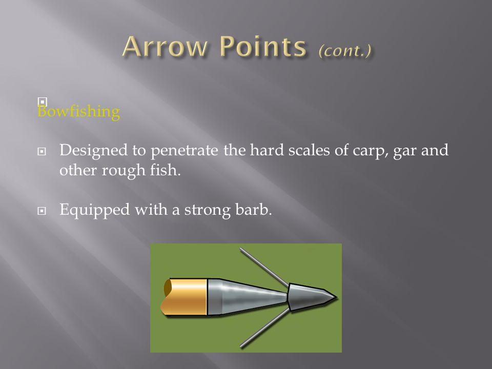 Arrow Points (cont.) Bowfishing