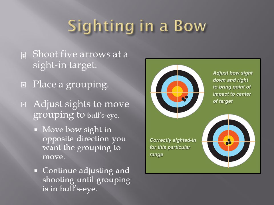 Sighting in a Bow Shoot five arrows at a sight-in target.