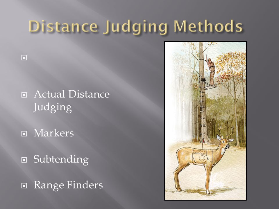 Distance Judging Methods