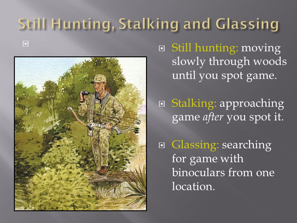 Still Hunting, Stalking and Glassing
