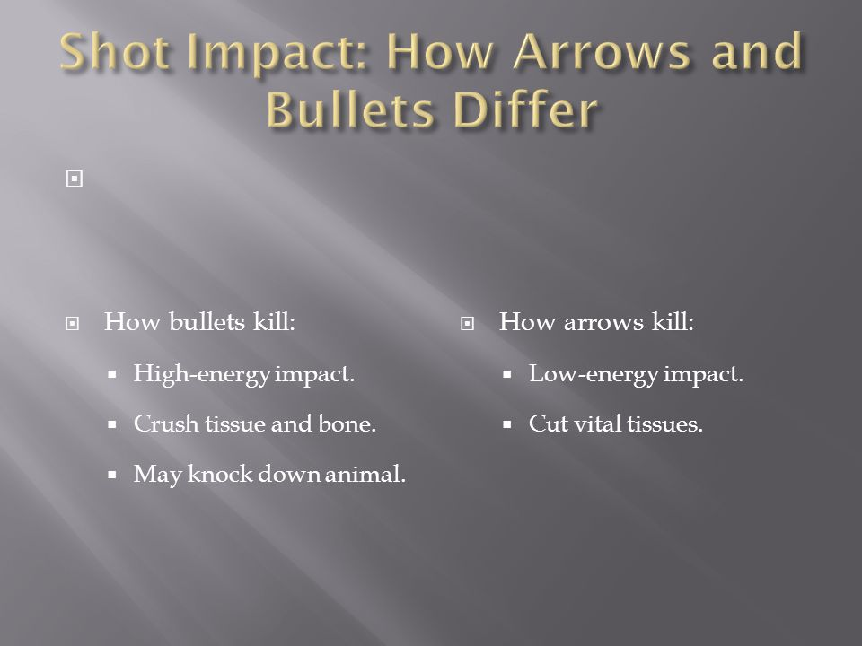 Shot Impact: How Arrows and Bullets Differ