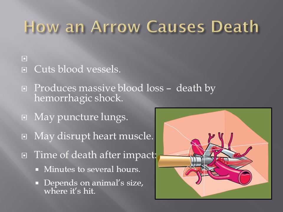How an Arrow Causes Death
