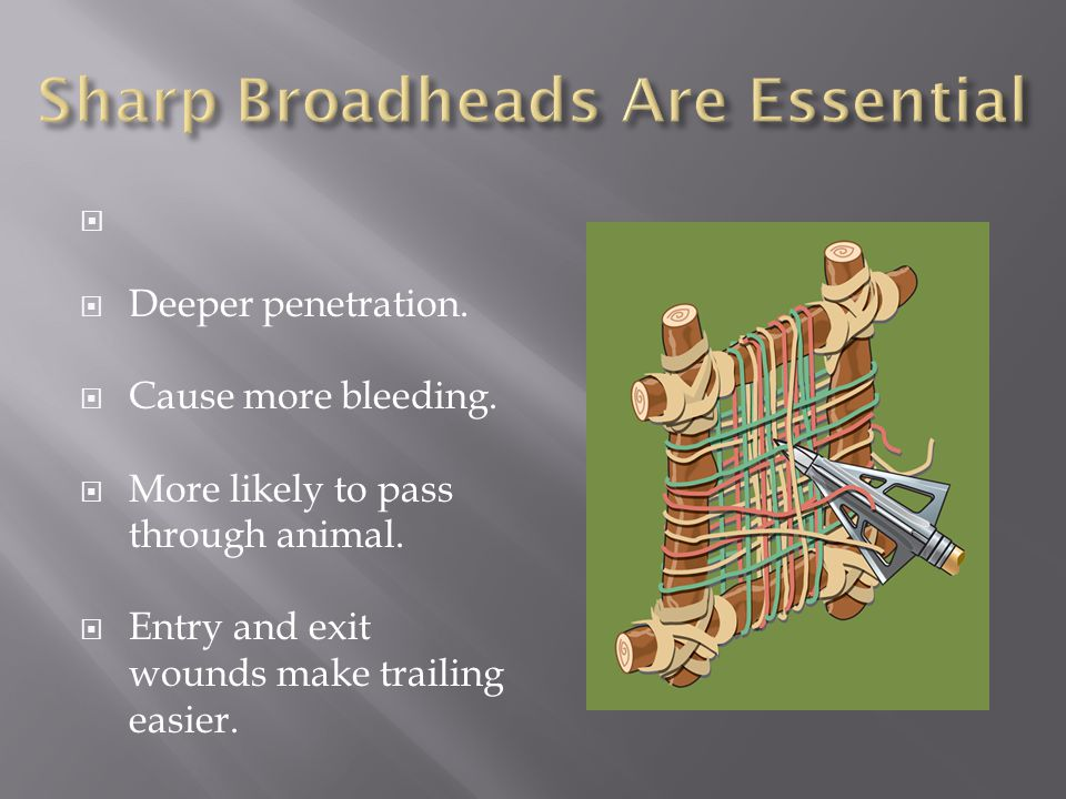 Sharp Broadheads Are Essential