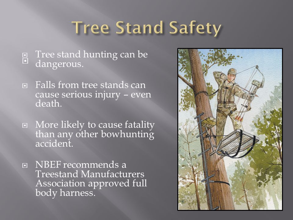 Tree Stand Safety Tree stand hunting can be dangerous.
