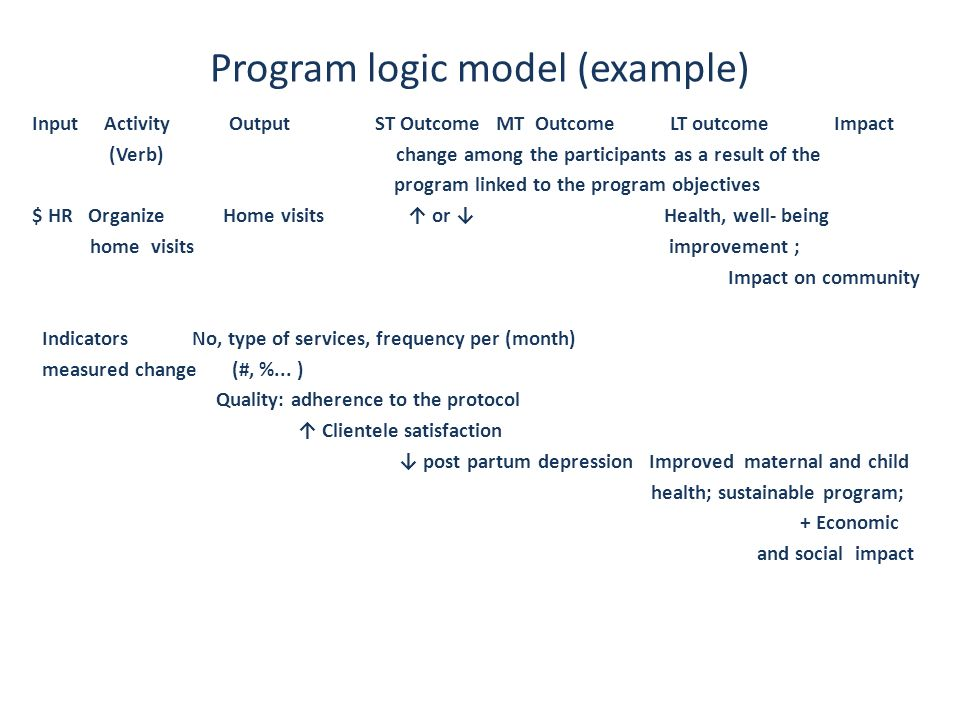 Program logic model (example)