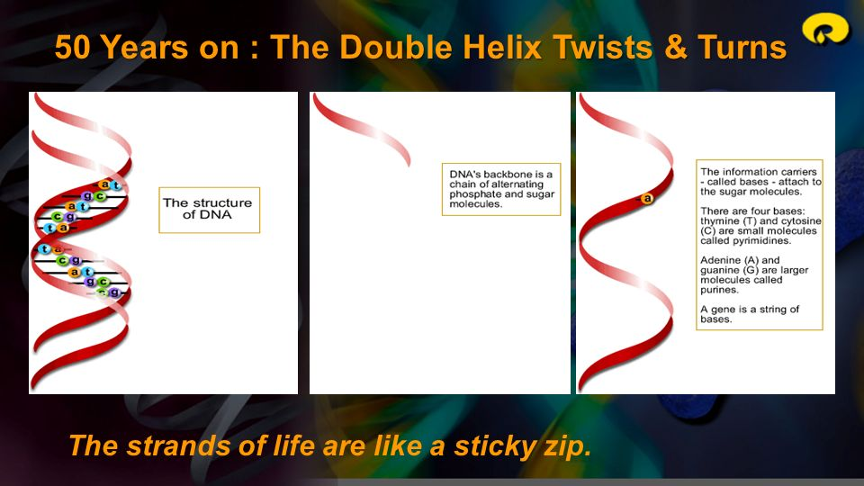 50 Years on : The Double Helix Twists & Turns