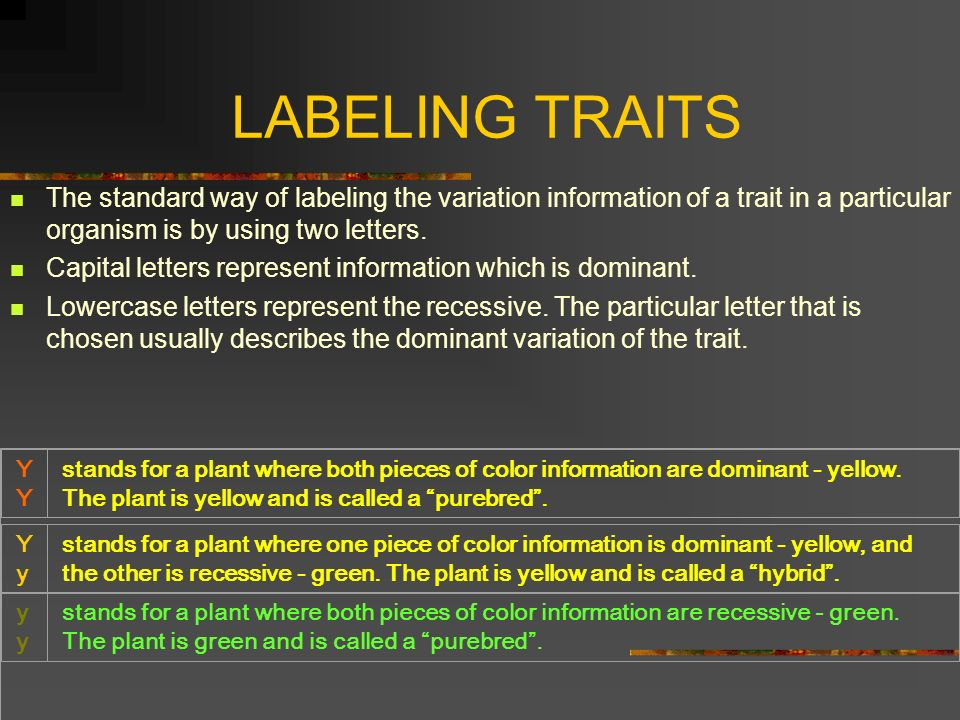 LABELING TRAITS The standard way of labeling the variation information of a trait in a particular organism is by using two letters.