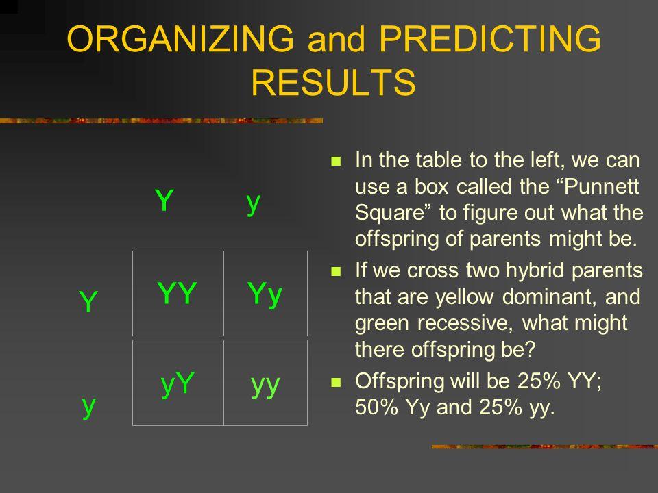 ORGANIZING and PREDICTING RESULTS