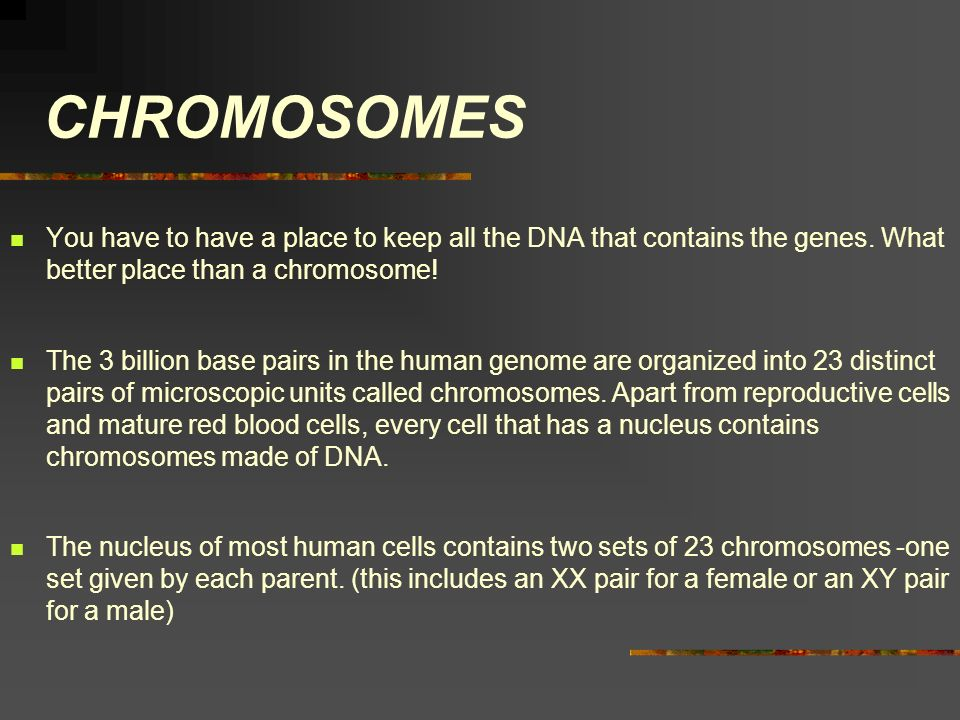 CHROMOSOMES You have to have a place to keep all the DNA that contains the genes. What better place than a chromosome!