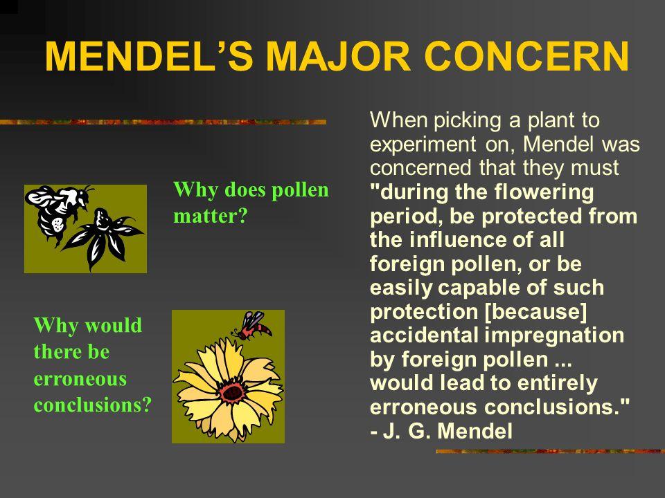 MENDEL'S MAJOR CONCERN