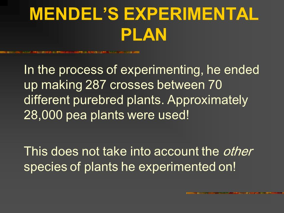 MENDEL'S EXPERIMENTAL PLAN