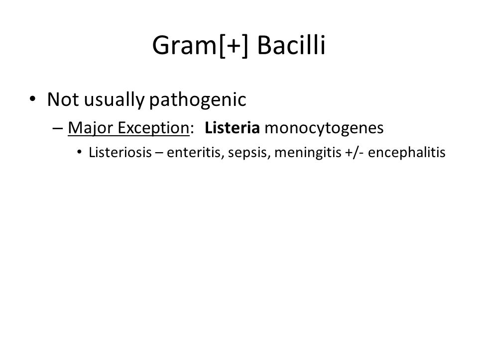 Gram[+] Bacilli Not usually pathogenic
