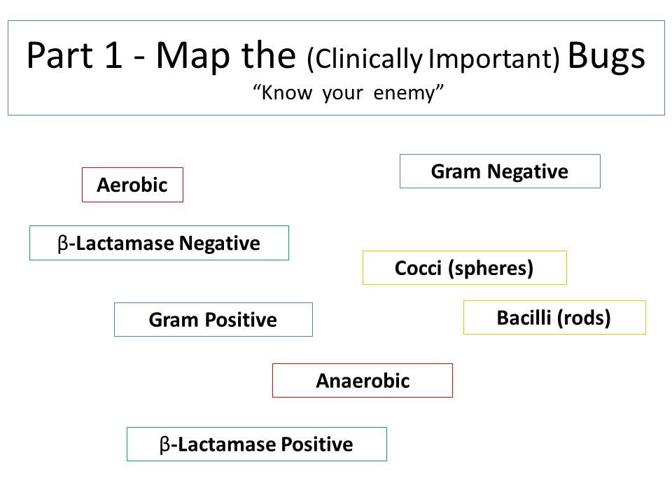 Part 1 - Map the (Clinically Important) Bugs Know your enemy