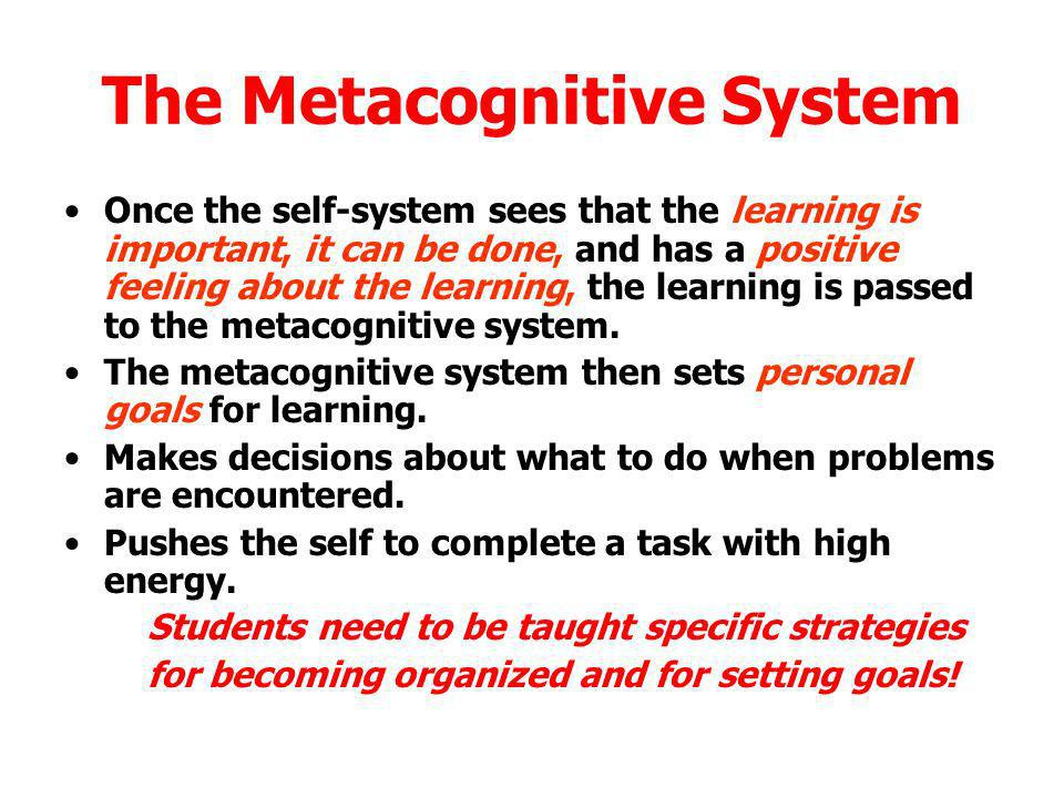 The Metacognitive System