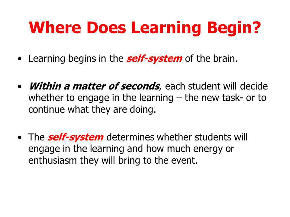 Where Does Learning Begin