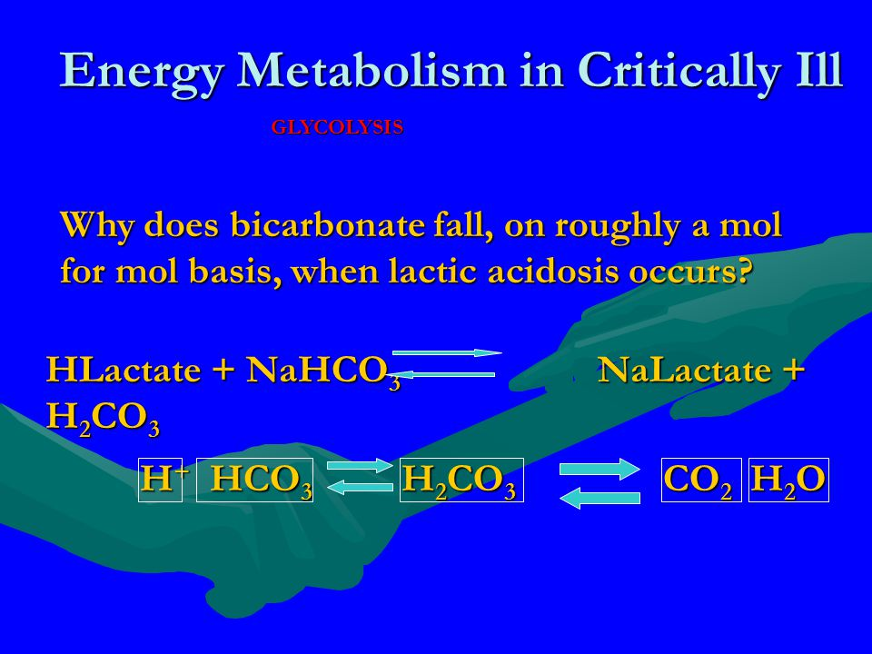 Energy Metabolism in Critically Ill