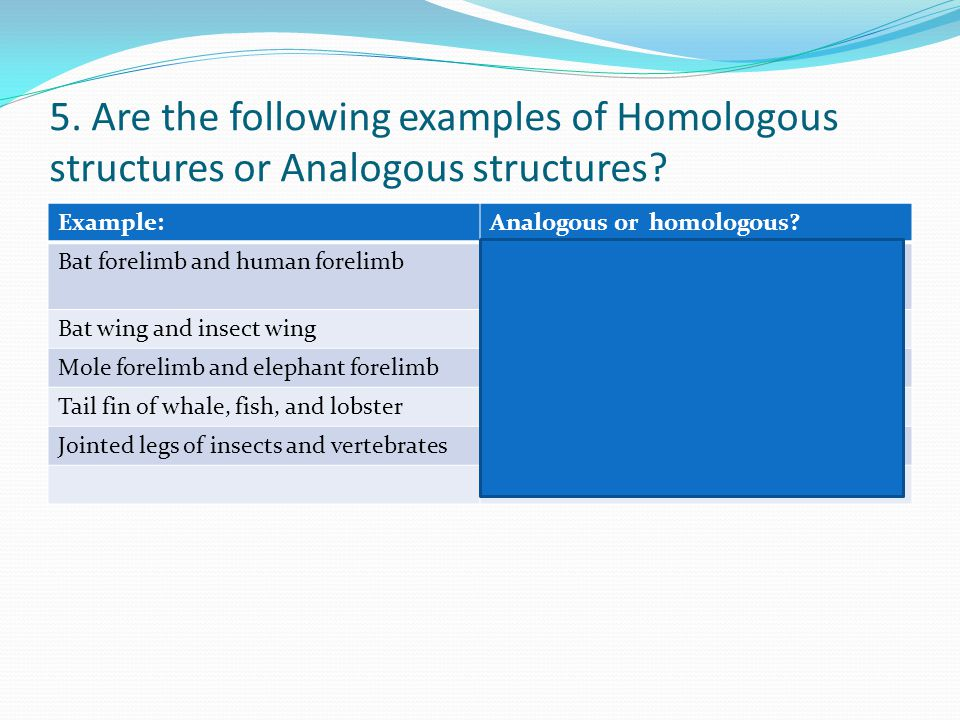 5. Are the following examples of Homologous structures or Analogous structures