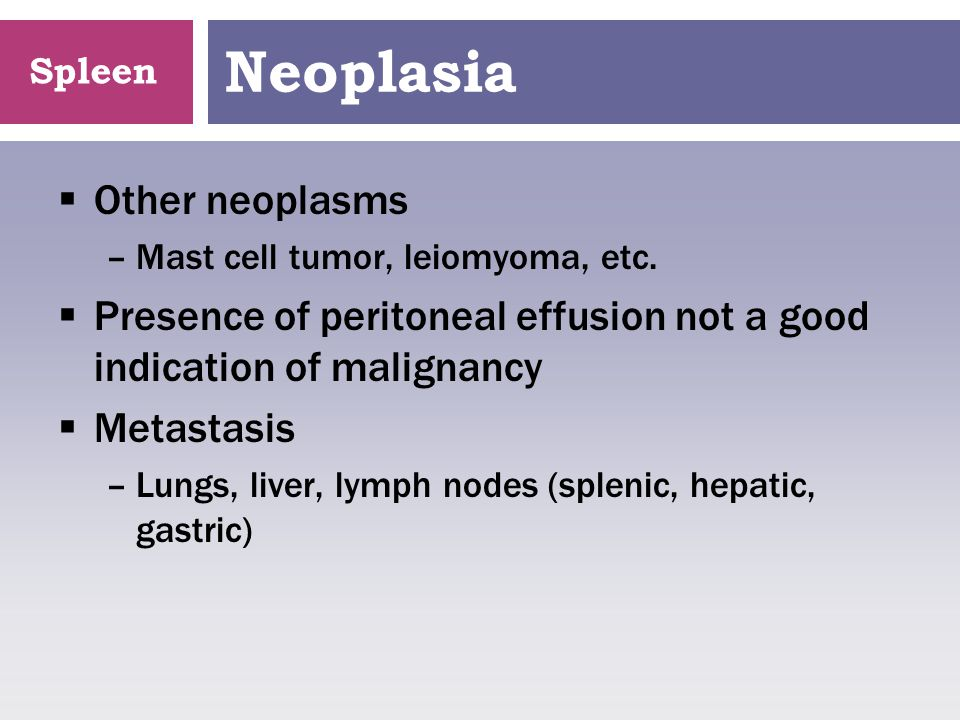 Neoplasia Other neoplasms