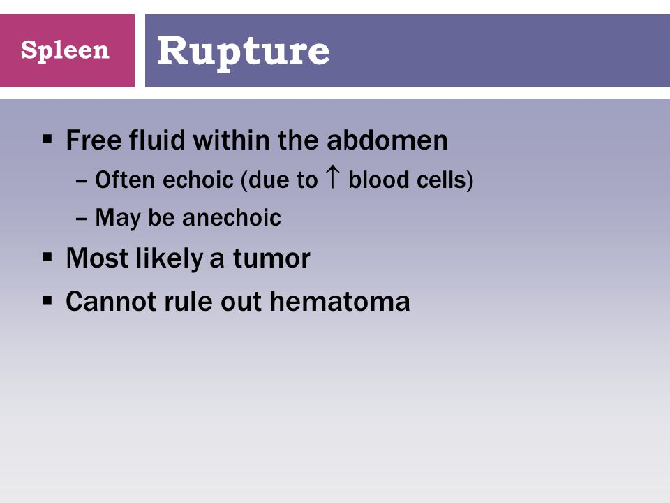 Rupture Free fluid within the abdomen Most likely a tumor