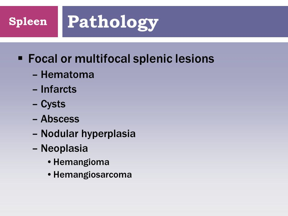 Pathology Focal or multifocal splenic lesions Hematoma Infarcts Cysts