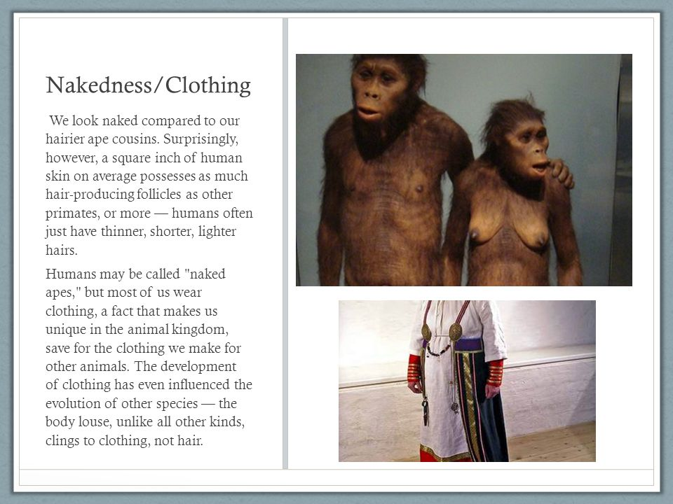 Nakedness/Clothing