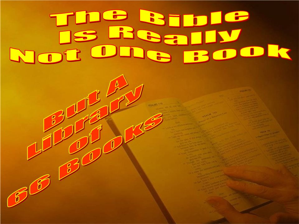 The Bible Is Really Not One Book But A Library of 66 Books