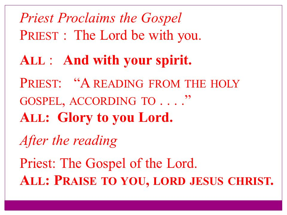 Priest Proclaims the Gospel