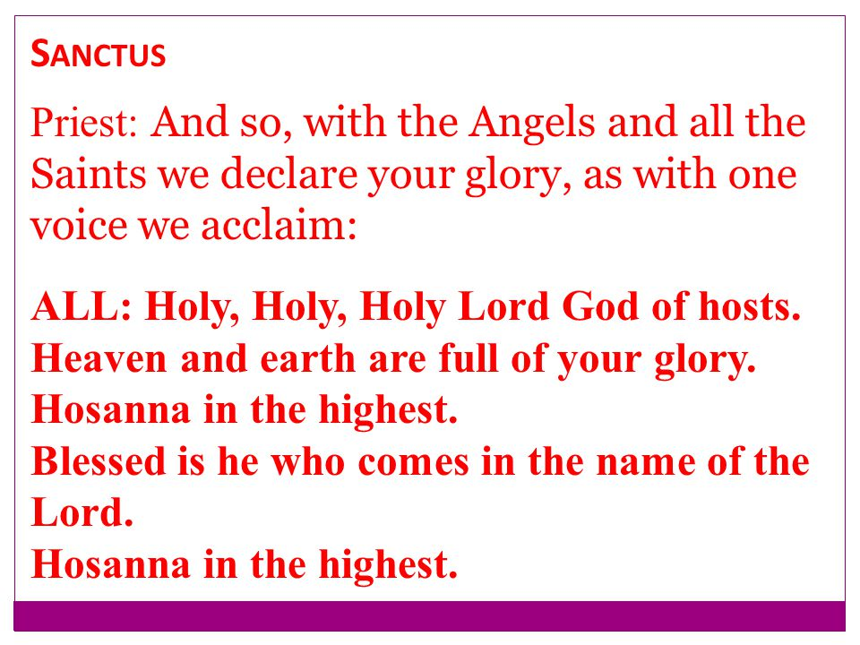 Sanctus Priest: And so, with the Angels and all the Saints we declare your glory, as with one voice we acclaim: