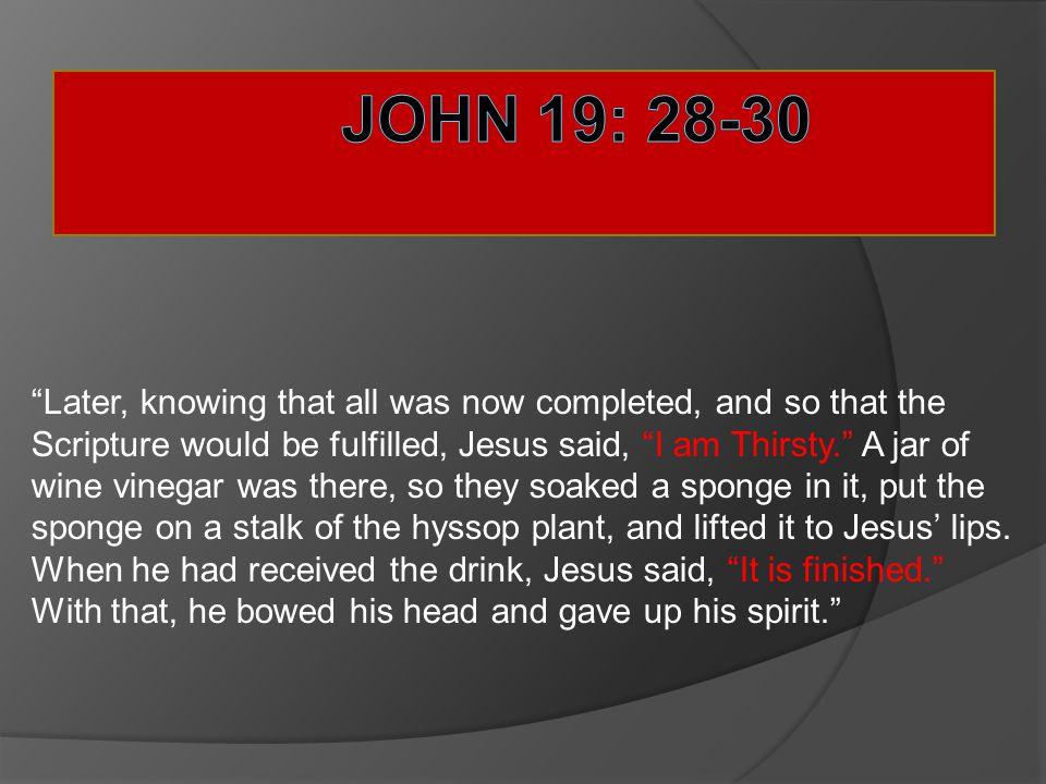 John 19: 28-30