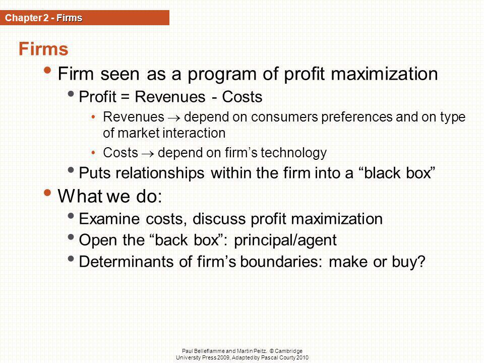Firm seen as a program of profit maximization