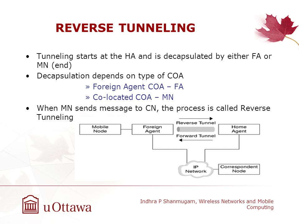 REVERSE TUNNELING Tunneling starts at the HA and is decapsulated by either FA or MN (end) Decapsulation depends on type of COA.