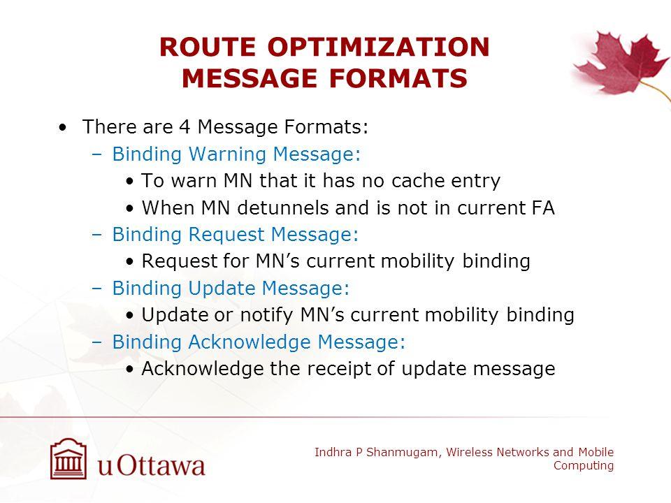 ROUTE OPTIMIZATION MESSAGE FORMATS