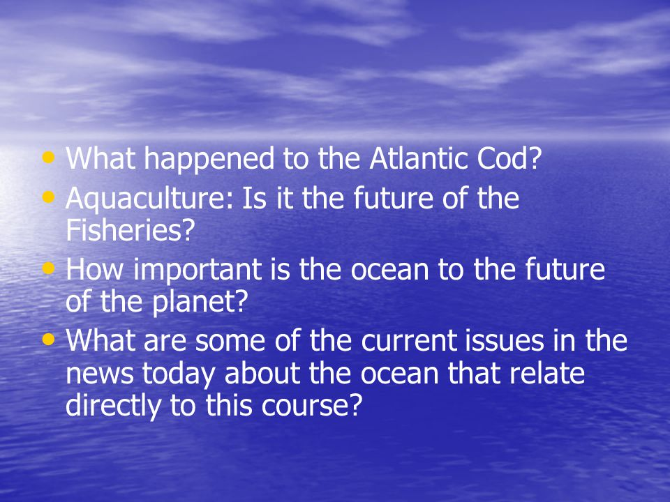 What happened to the Atlantic Cod