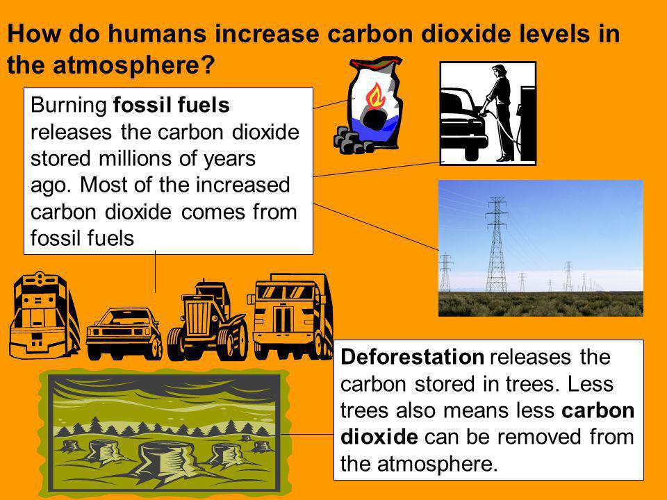 How do humans increase carbon dioxide levels in the atmosphere