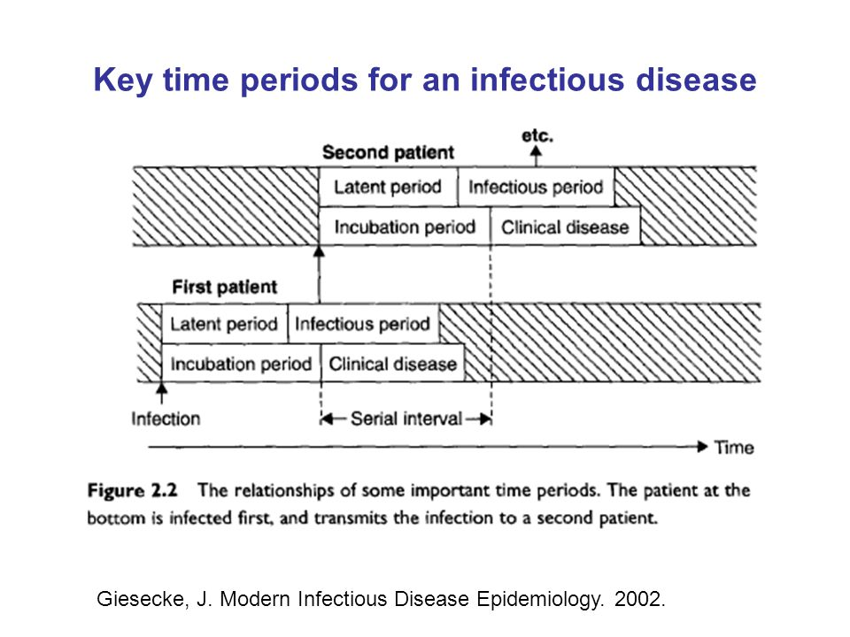 Key time periods for an infectious disease