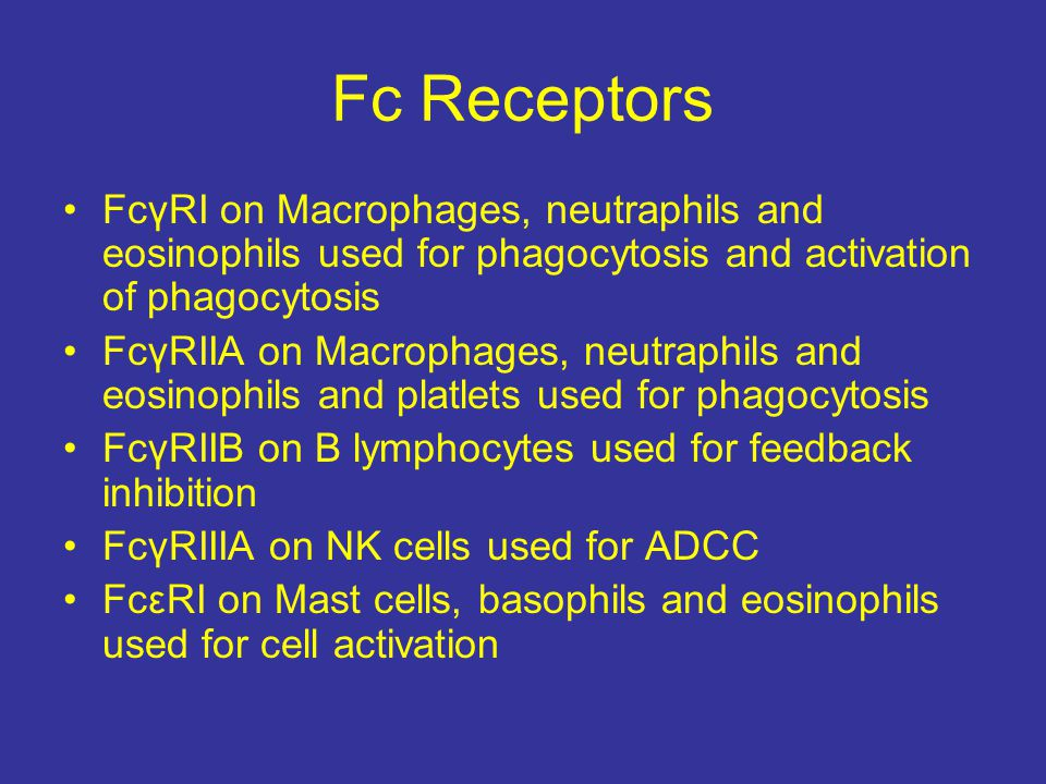 Fc Receptors FcγRI on Macrophages, neutraphils and eosinophils used for phagocytosis and activation of phagocytosis.