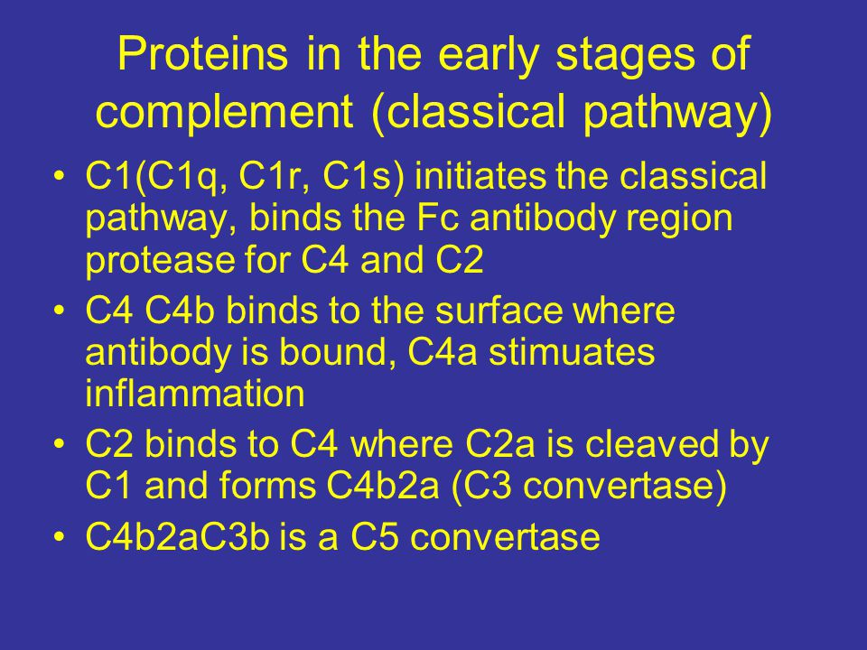 Proteins in the early stages of complement (classical pathway)