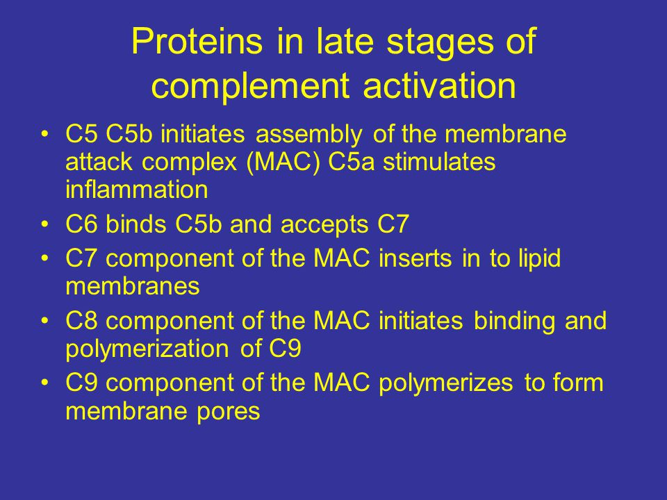 Proteins in late stages of complement activation