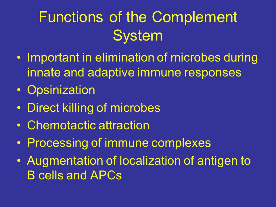 Functions of the Complement System