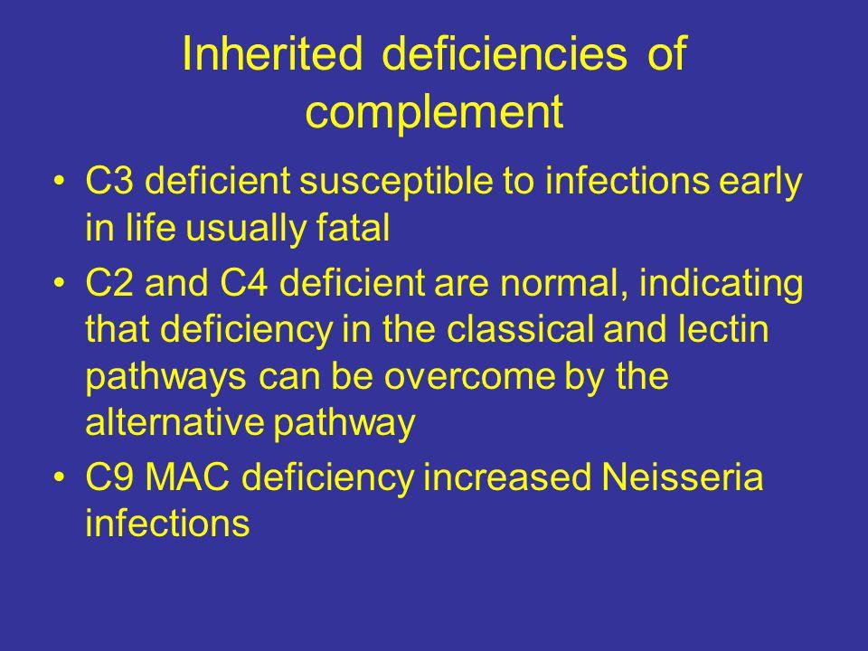 Inherited deficiencies of complement