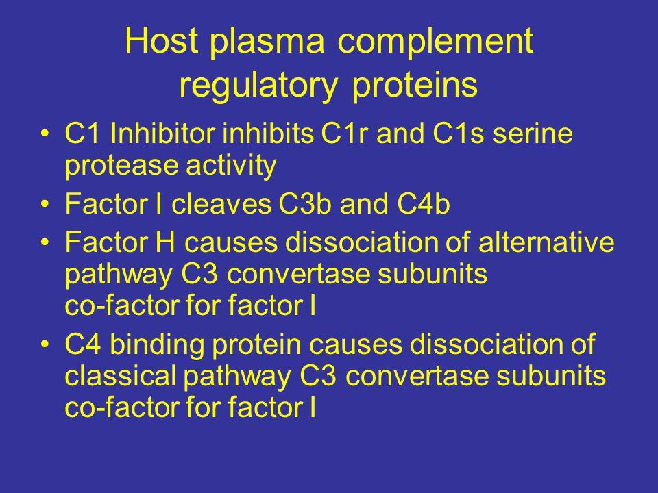 Host plasma complement regulatory proteins