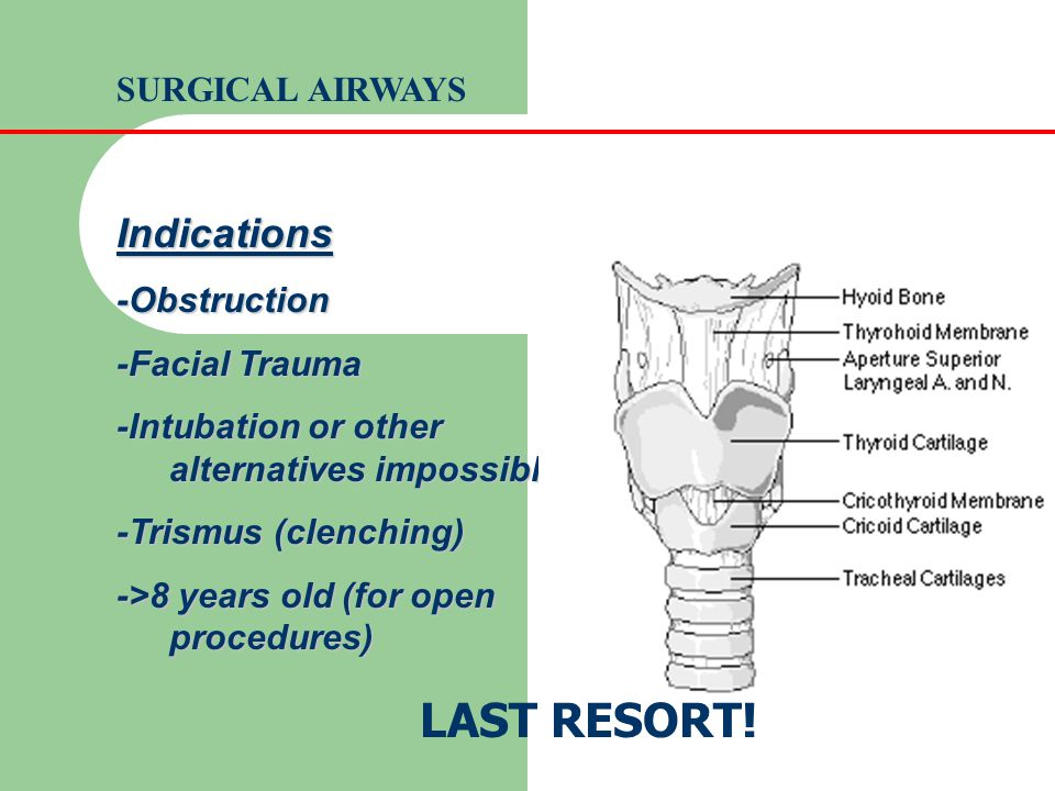 LAST RESORT! Indications SURGICAL AIRWAYS -Obstruction -Facial Trauma