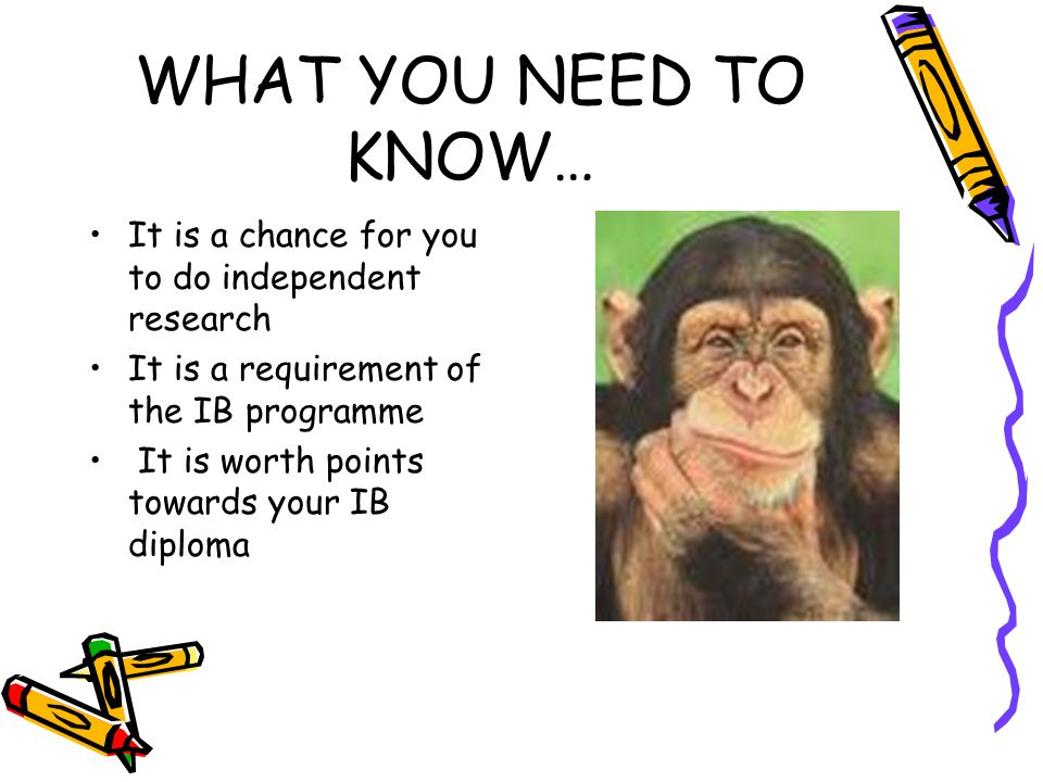 WHAT YOU NEED TO KNOW… It is a chance for you to do independent research. It is a requirement of the IB programme.