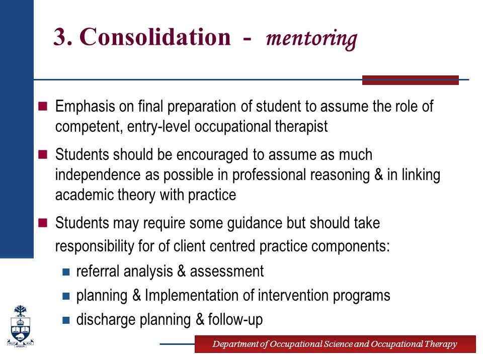 3. Consolidation - mentoring