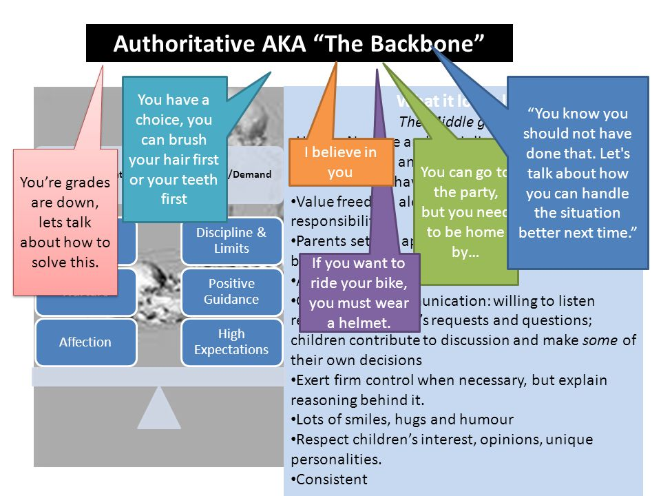 Authoritative AKA The Backbone