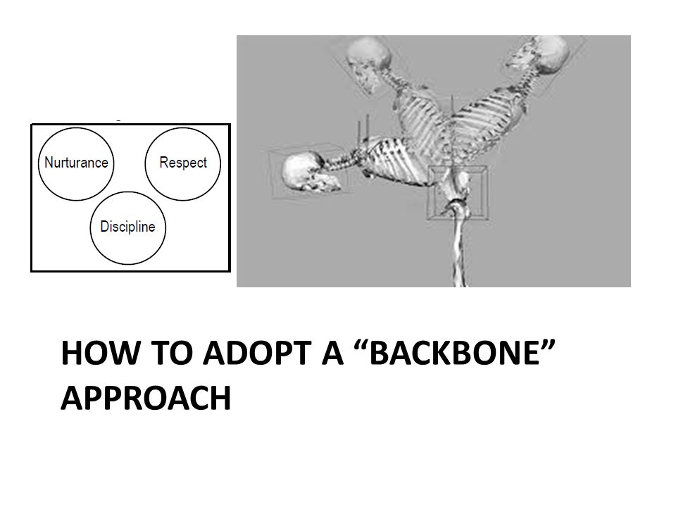 How to adopt a backbone approach