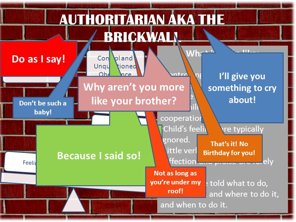 AUTHORITARIAN AKA THE BRICKWALL